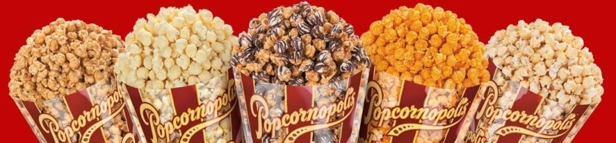 Popcornoplis Fundraiser